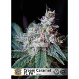 Cream Caramel Fast Version