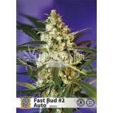 fast bud 2