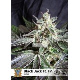Black Jack F1Fast Version