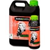 Maria green FLORACIÓN