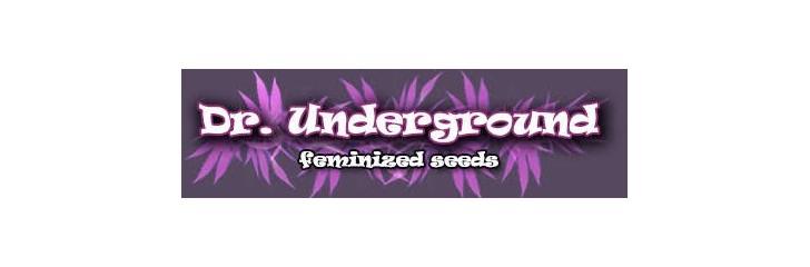 DR UNDEGROUND