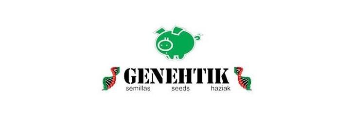GENETHIK
